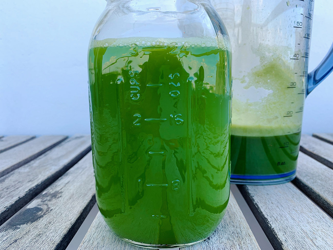 Celery Juice for Gut Health